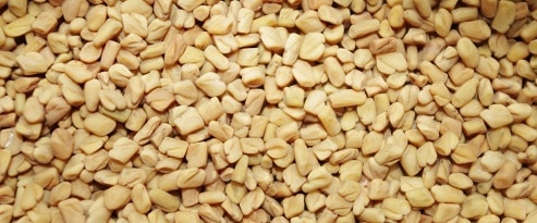 fenugreek seeds to increase breast size